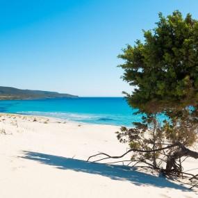 Immagine uno Sardegna