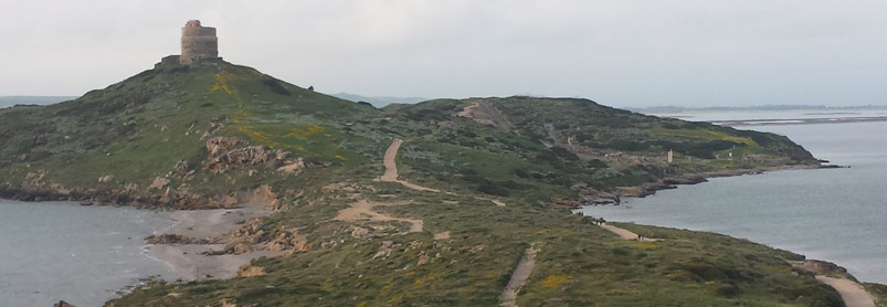 Sardiniens vingårdar-web_20140413_183007.jpg