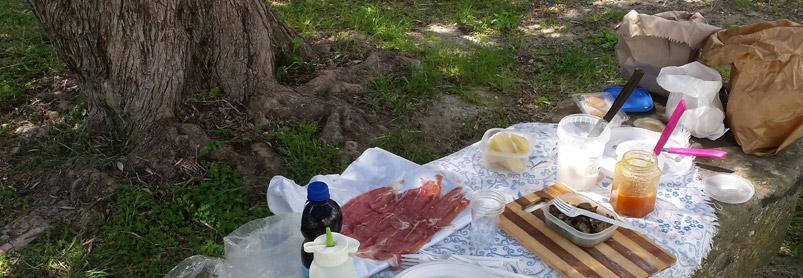 Sardiniens vingårdar-web_20140417_134222.jpg