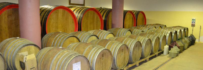 Sardiniens vingårdar-web_dsc_0223.jpg